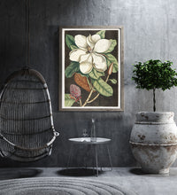 Laurel Tree and Magnolia Altissima Poster