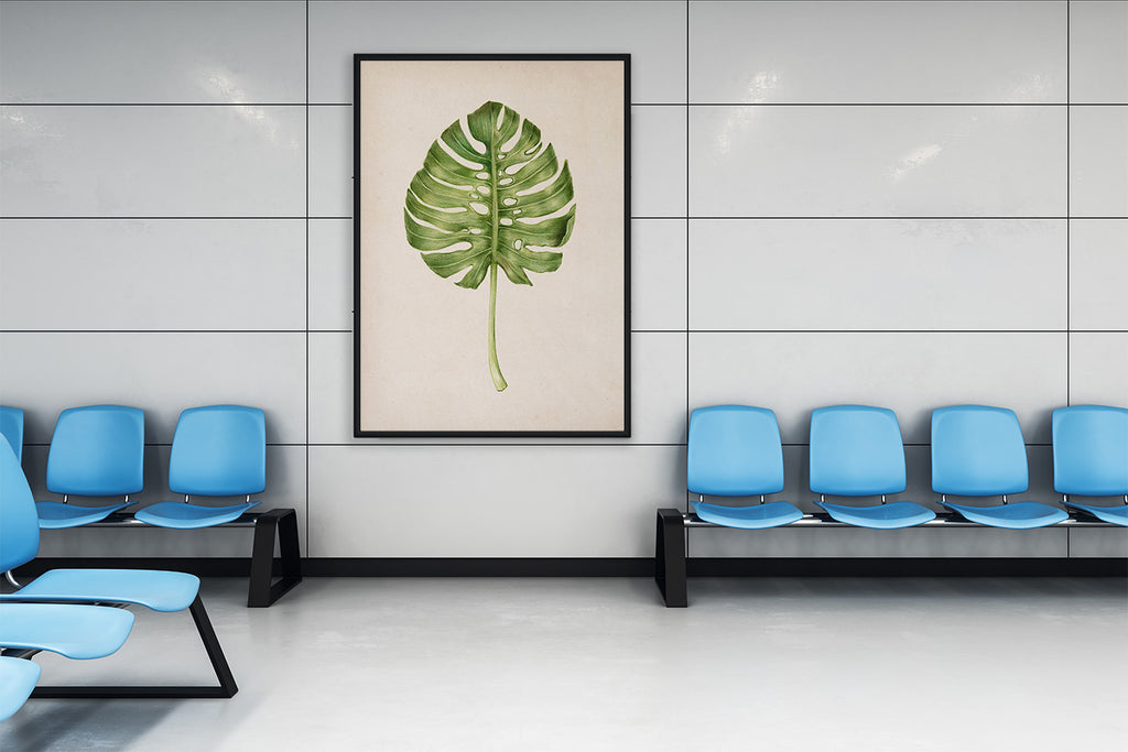 Monstera Plant Poster