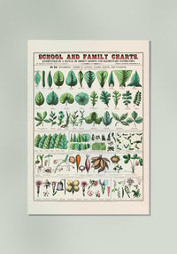 School and Family Food Chart