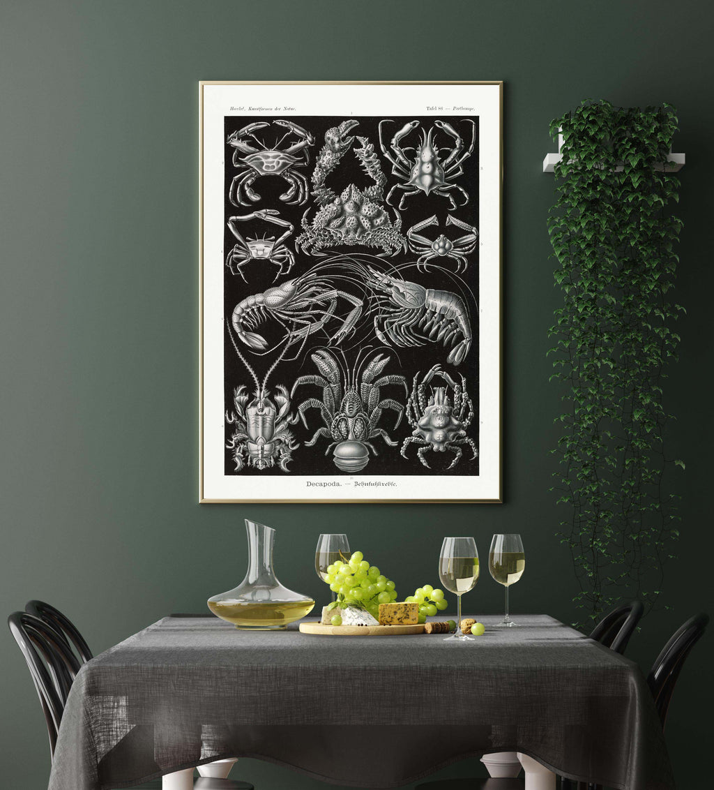Decapoda by Ernst Haeckel Poster