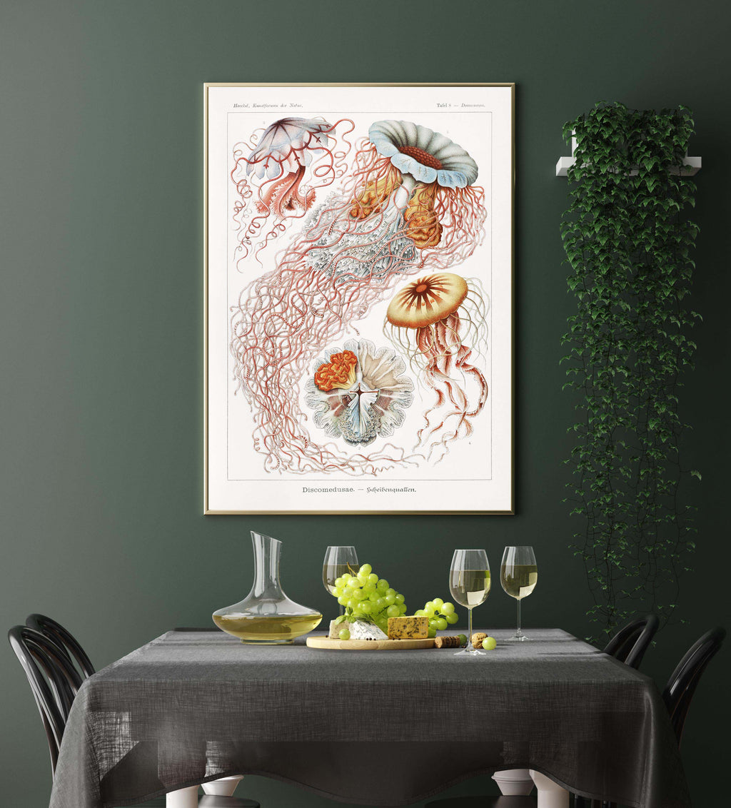 Discomedusae III by Ernst Haeckel Poster