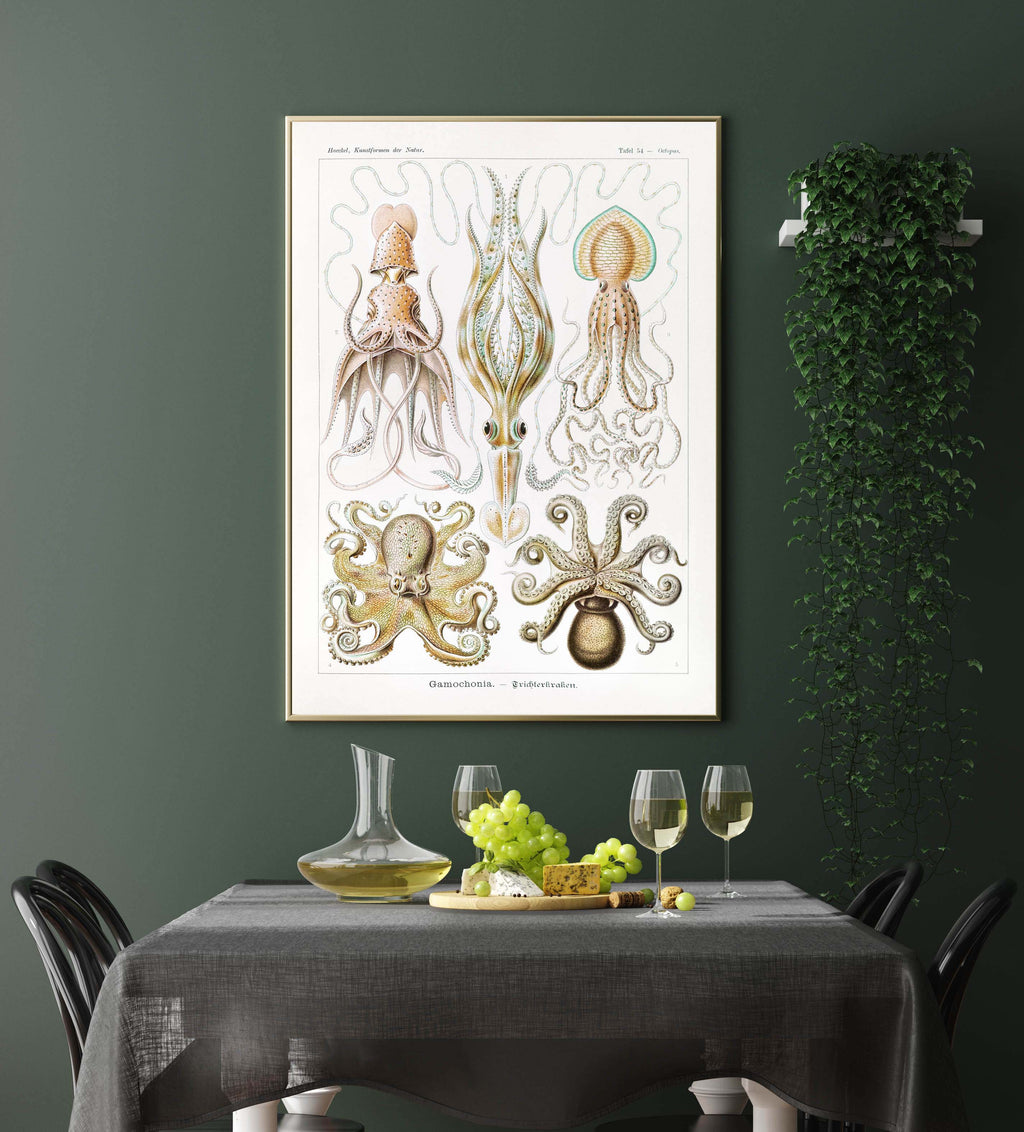 Gamochonia by Ernst Haeckel Poster with borders