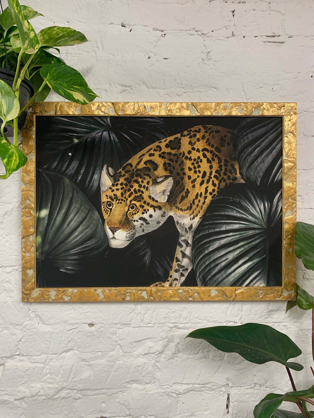 Leopard in the jungle Canvas Vintage Wood Frame
