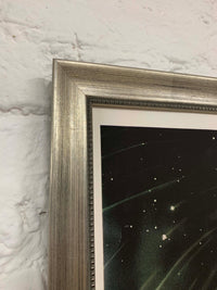 Trouvelot November Meteors Canvas Vintage Wood Frame