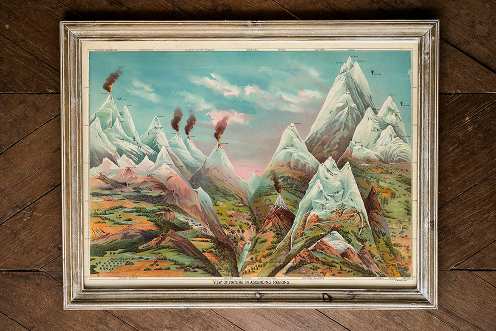 Nature in Ascending Regions Educational Vintage Poster - Kuriosis Vintage Prints