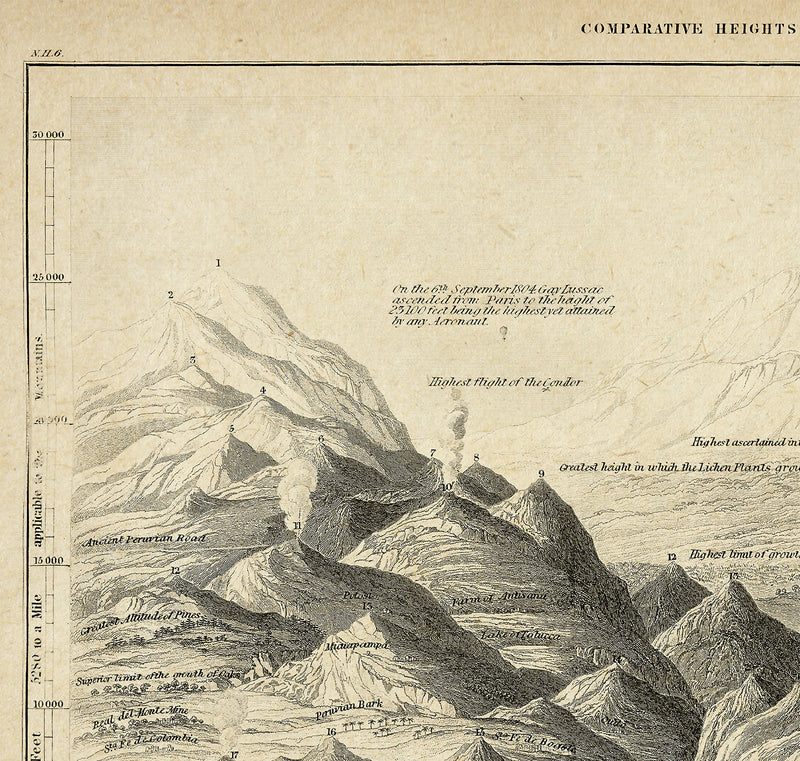 Comparative Height of Mountains Vintage Poster - Scientific Illustration - Kuriosis Vintage Prints