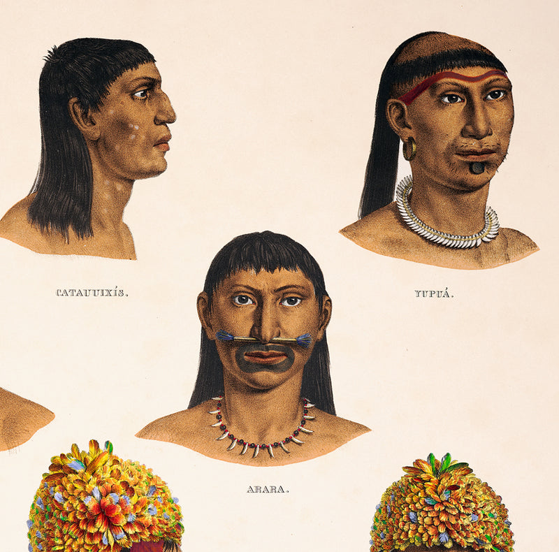 Brazilian Indigenous Anthropology Chart Vintage Poster
