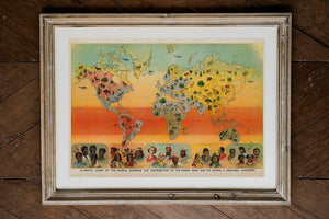 Climatic Chart of the World Poster Science Illustration in Wooden Frame