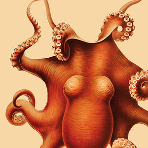 Octopus Polypus, Lovely Kitchen Decor Idea - Kuriosis Vintage Prints