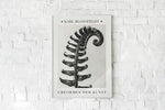 Polystchichum Munitum (Prickly Shield-Fern) from Urformen der Kunst (1928) by Karl Blossfeldt. Fine Art Photo Reproduction from the original photogravure.