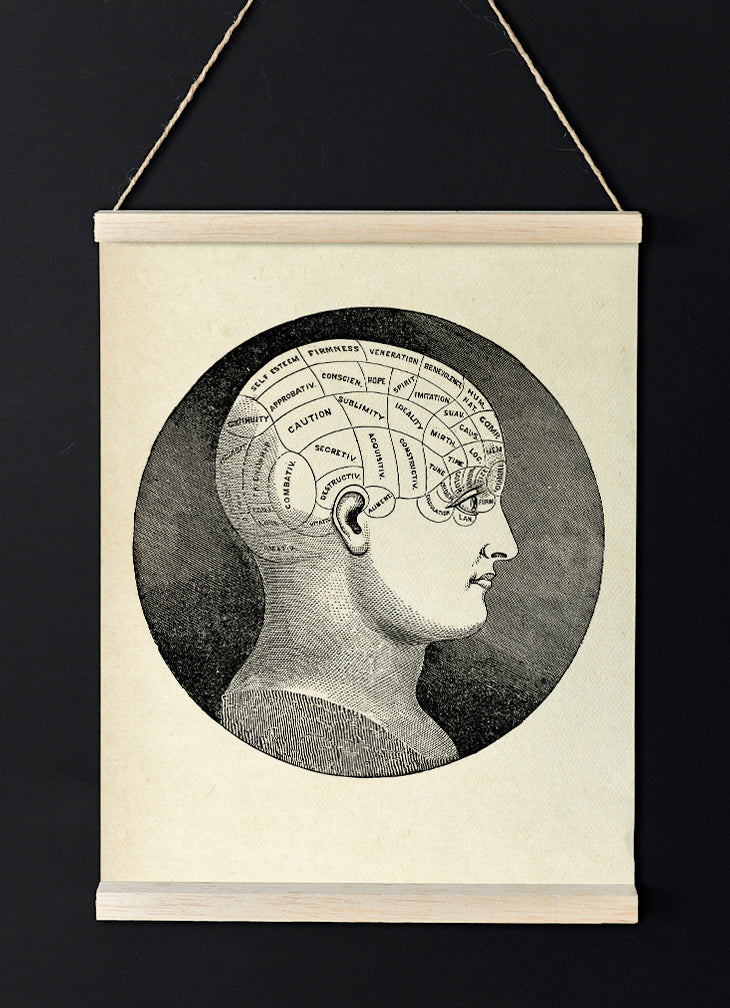 The Classic Phrenology Head - Vintage poster of human mind for your room