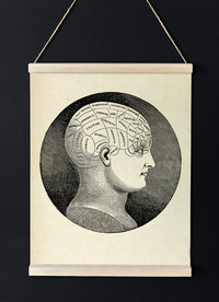 The Classic Phrenology Head - Vintage poster of human mind for your room - Kuriosis Vintage Prints