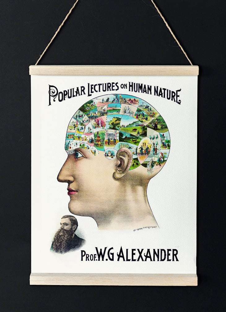 The Popular Lectures of Human Nature - Vintage Phrenology Science Poster