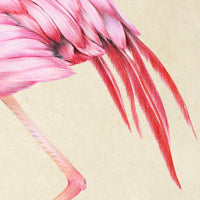 Antique Pink Flamingo Poster by KURIOSIS