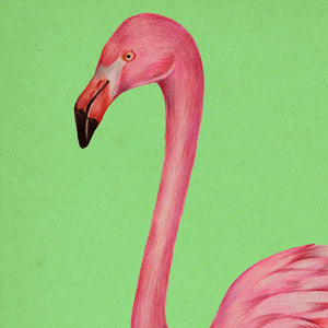 Antique Pink and Green Flamingo Poster by KURIOSIS