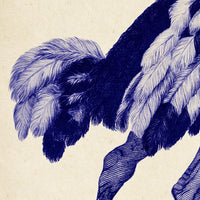 Antique Blue Ostrich Poster by KURIOSIS