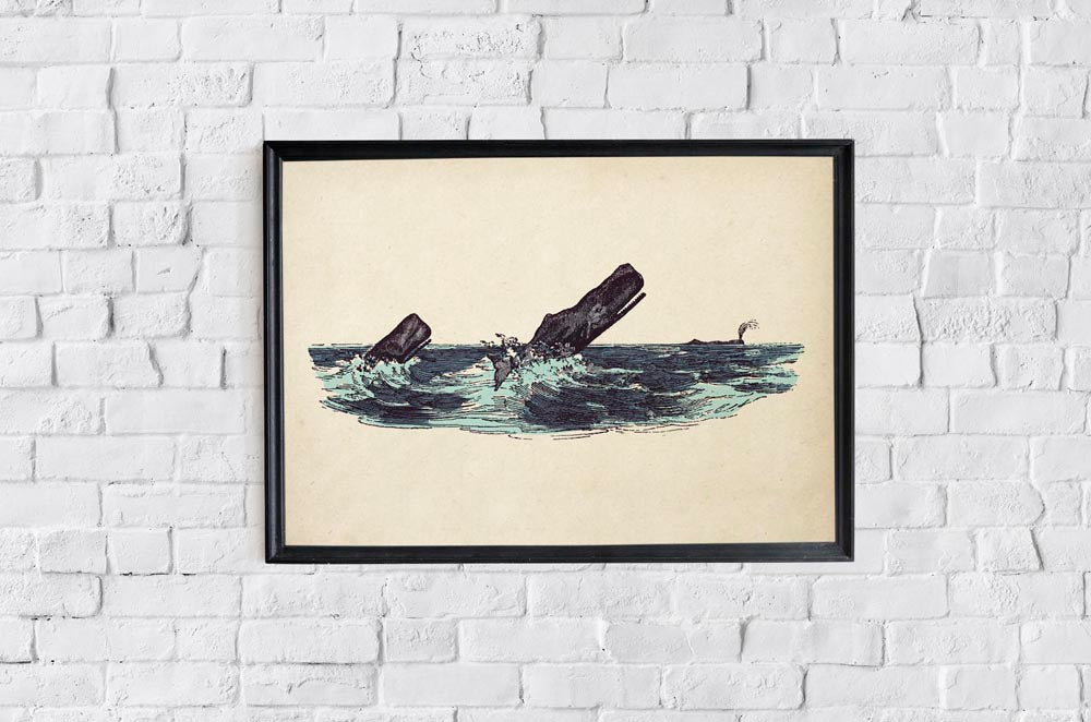 Antique Whales Poster by KURIOSIS