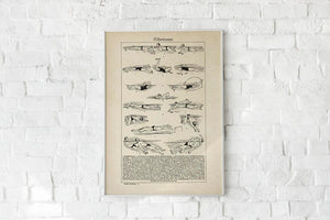 Antique Swimmers Poster by KURIOSIS