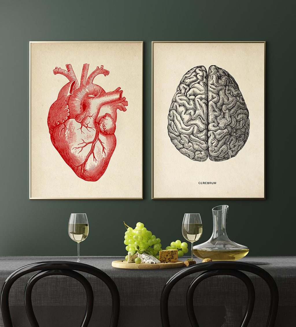 "Vintage Anatomy Poster ""HEART & BRAIN"" Set of 2 Prints"