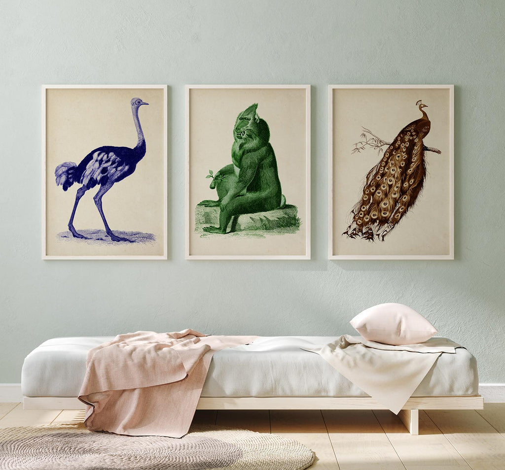 Colorful Wild Animals Set of 3 Poster