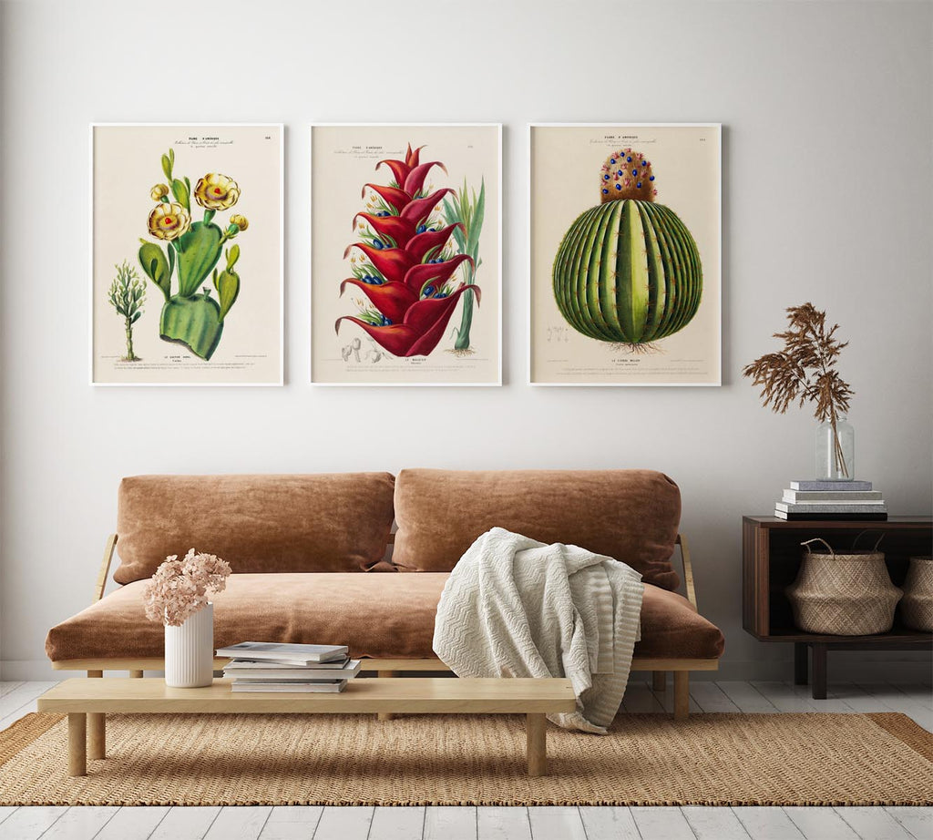 Cactus and Flowers Set of 3 Prints