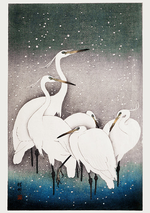 5 White Cranes in the snow by Koson - Kuriosis Vintage Prints