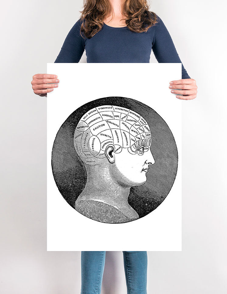 Phrenology Head - Kuriosis Vintage Prints