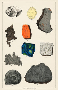 Mineral Collection Vintage Druck - Kuriosis Vintage Prints
