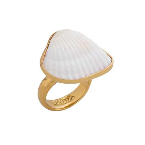 white shell gold ring