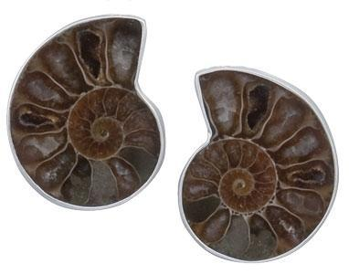 Sterling Silver Ammonite Clip Earrings | Charles Albert Jewelry