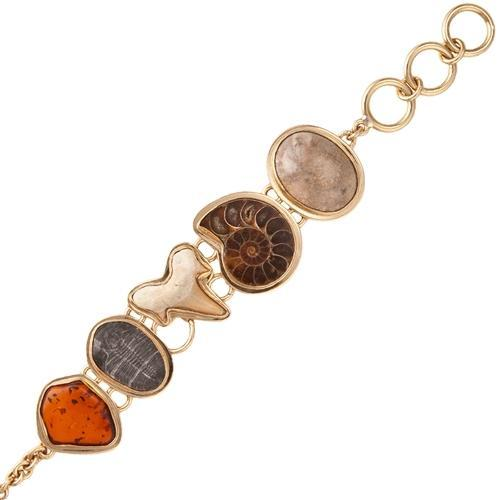 Alchemia Multi-Fossil Bracelet with Detailed Edge | Charles Albert Jewelry