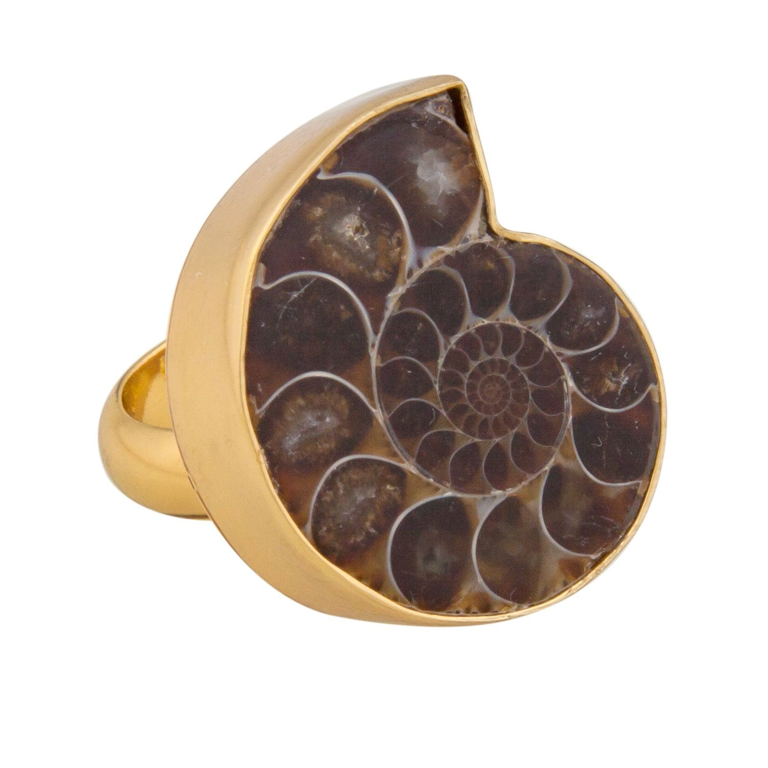 Alchemia Ammonite Adjustable Ring
