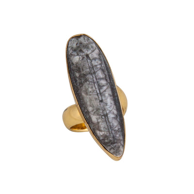 alchemia-orthoceras-adjustable-ring - 1 - Charles Albert Inc