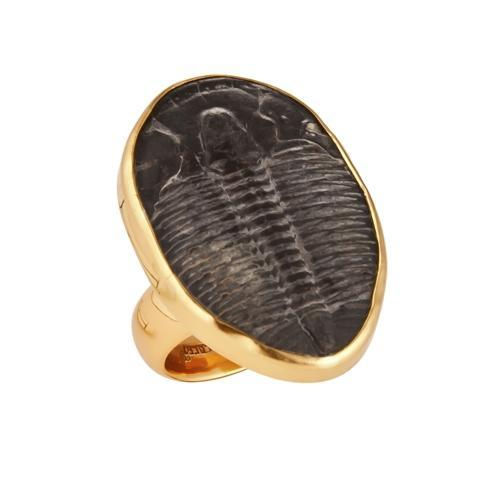 Alchemia Trilobite Adjustable Ring | Charles Albert Jewelry