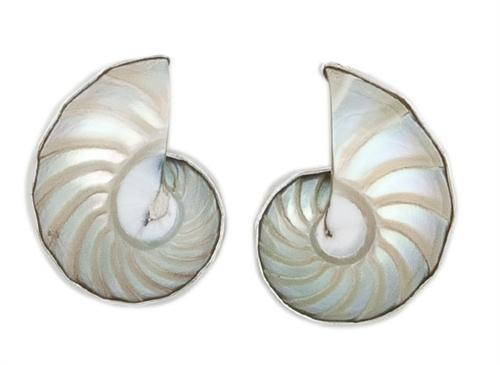 sterling-silver-nautilus-shell-earrings-post - 1 - Charles Albert Inc