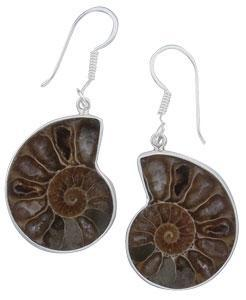 Sterling Silver Ammonite Drop Earrings