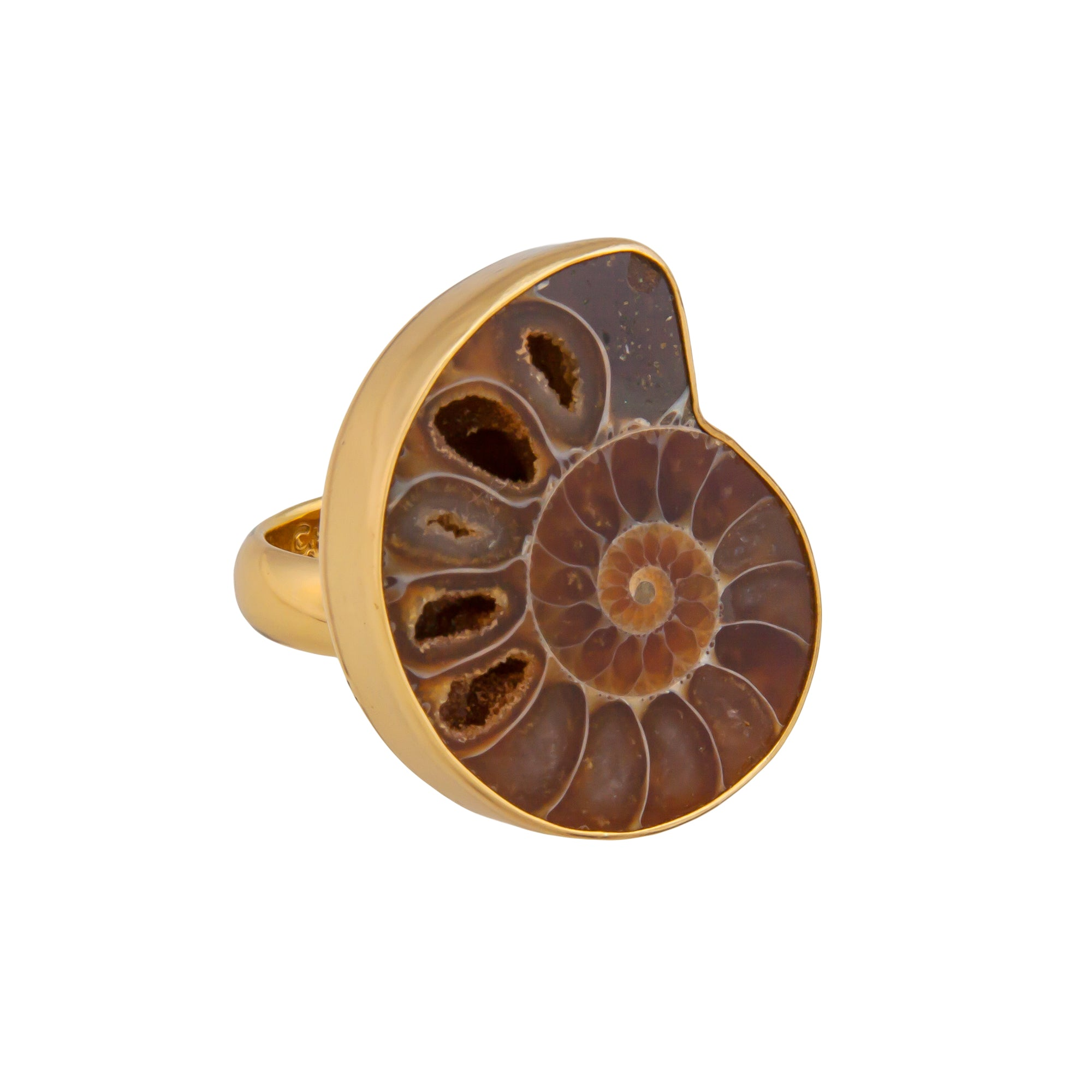 alchemia-ammonite-adjustable-ring - 1 - Charles Albert Inc