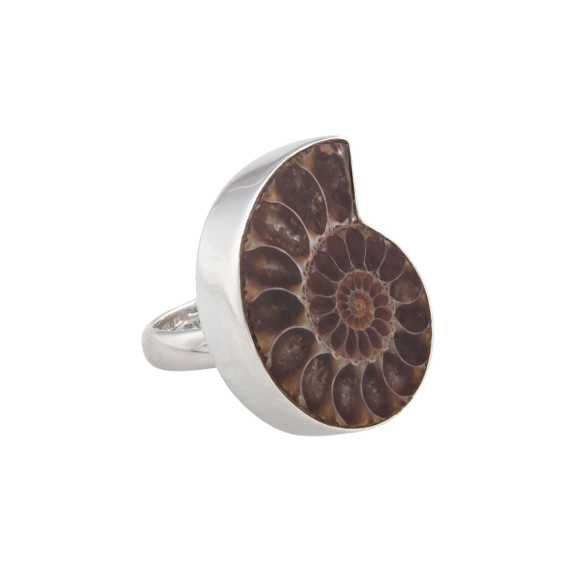 Sterling Silver Ammonite Adjustable Ring | Charles Albert Jewelry