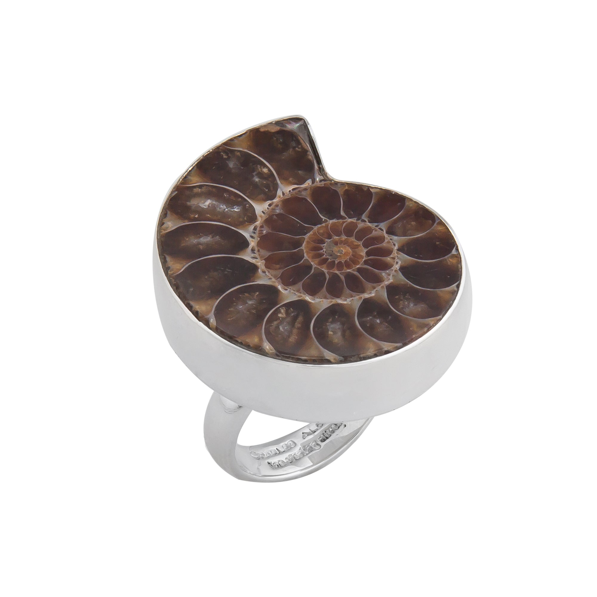 Sterling Silver Ammonite Adjustable Ring