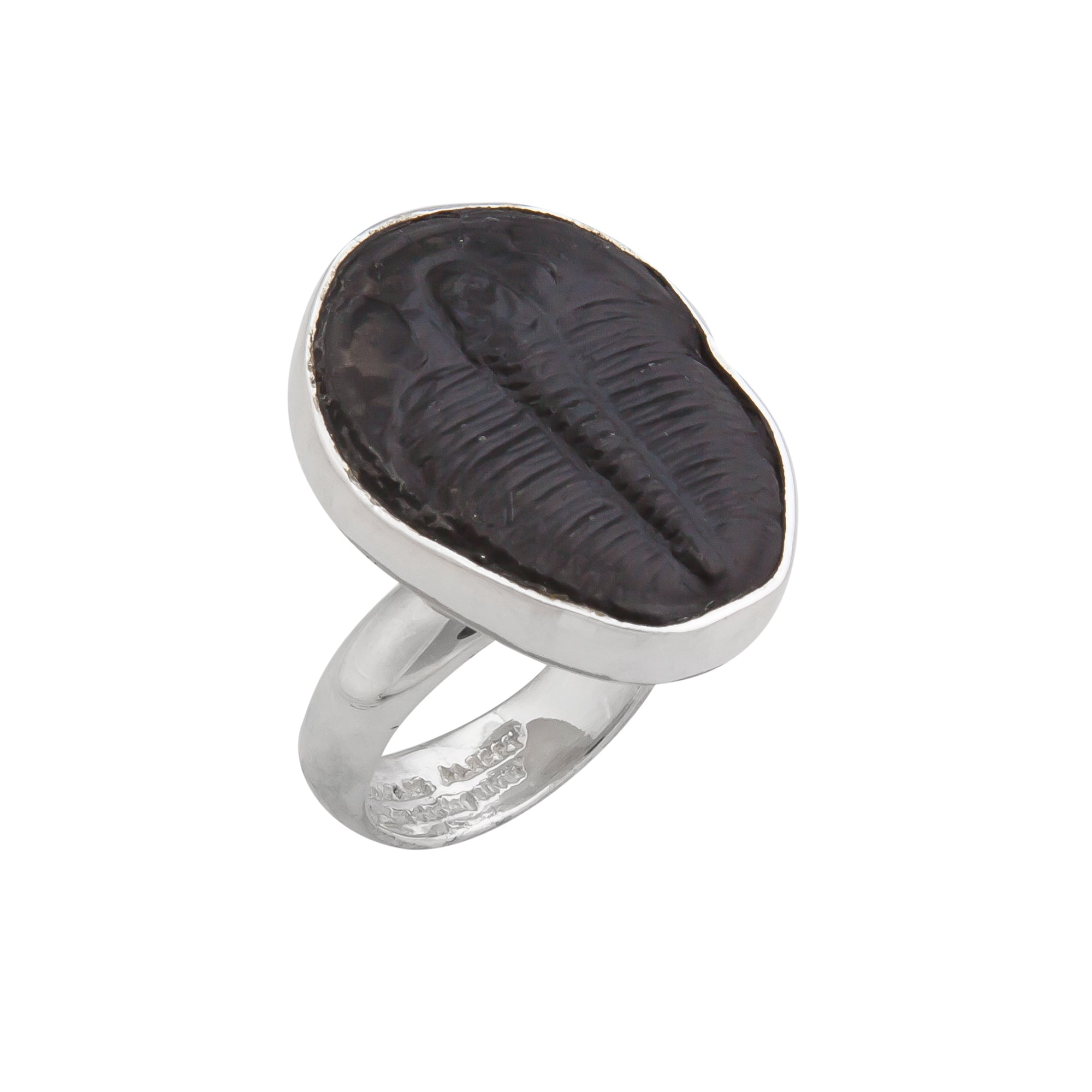 Sterling Silver Trilobite Adjustable Ring | Charles Albert Jewelry
