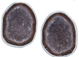 sterling-silver-tabasco-geode-clip-earrings - 1 - Charles Albert Inc