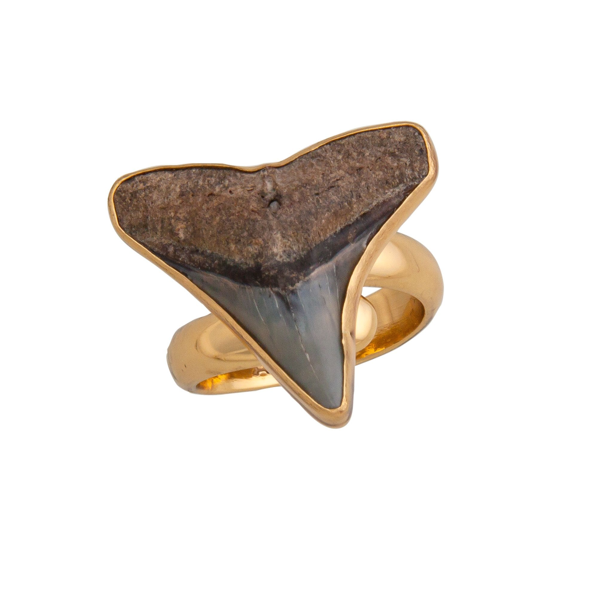 Alchemia Mini Shark Tooth Adjustable Ring | Charles Albert Jewelry