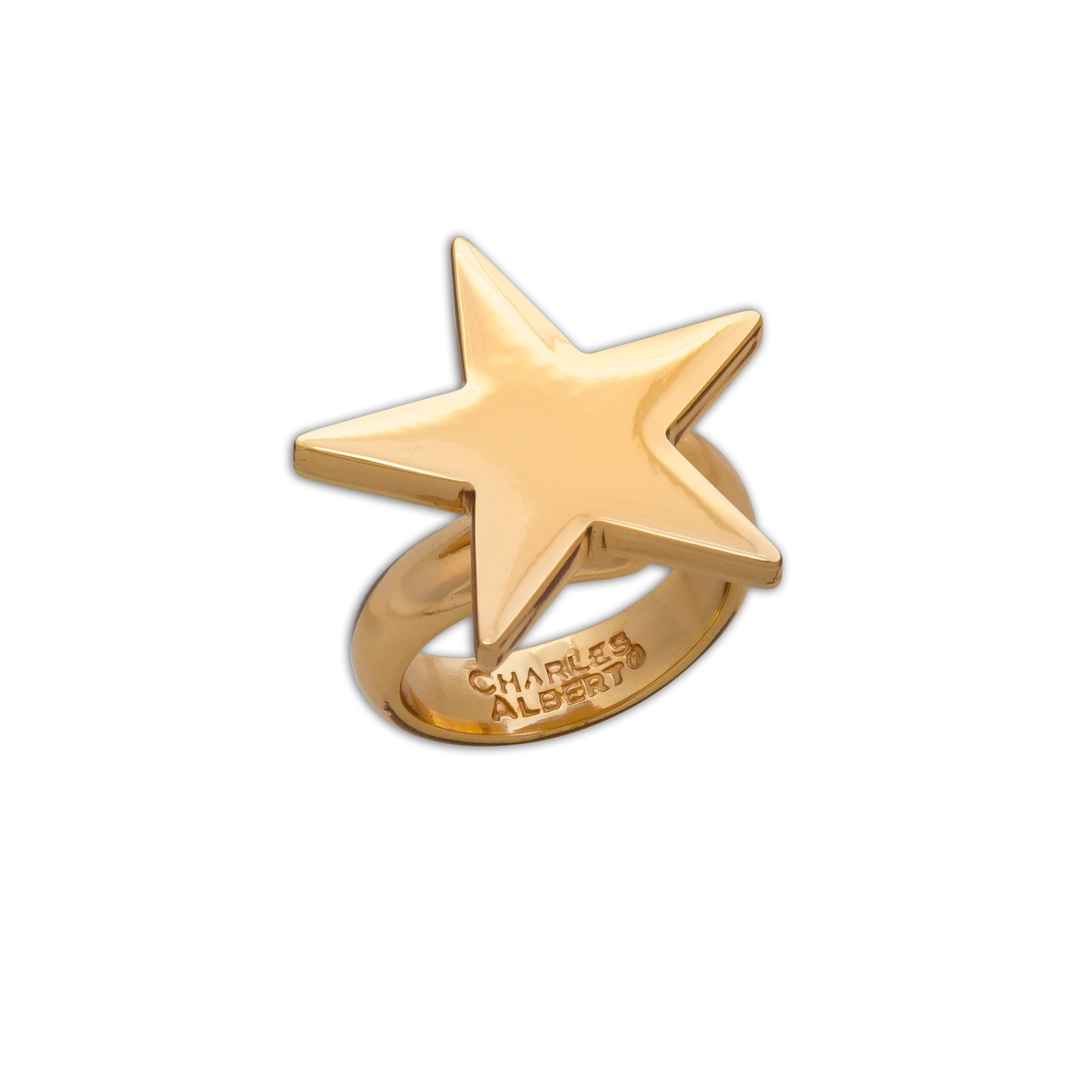 Alchemia-Star-Adjustable-Ring-1-Charles Albert Inc