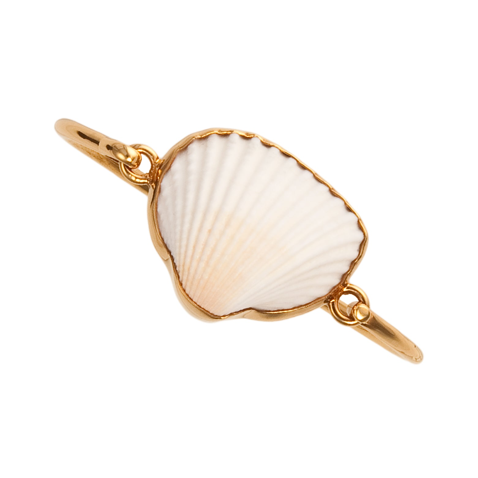 Alchemia Ark Shell Bangle | Charles Albert Jewelry