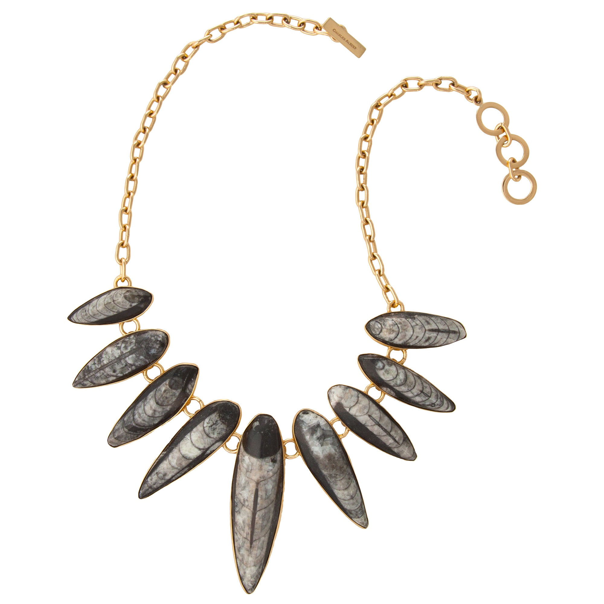 Orthoceras Fossil Necklace | Charles Albert Jewelry