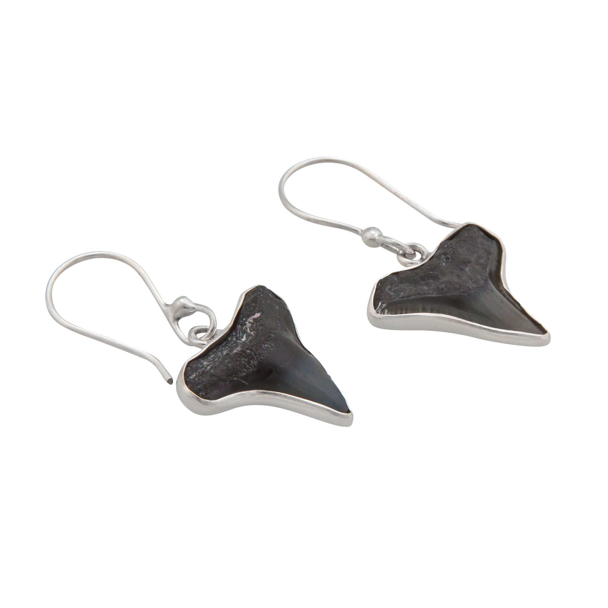 Sterling Silver Fossil Shark Teeth Drop Earrings | Charles Albert Jewelry