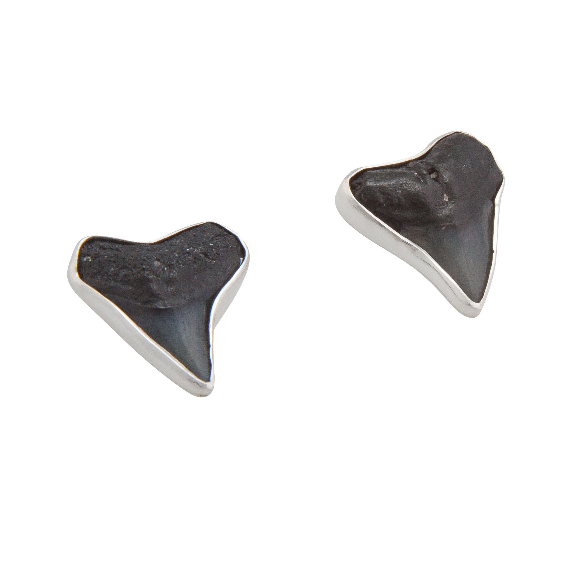 Sterling Silver Shark Teeth Post Earrings | Charles Albert Jewelry