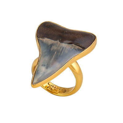 alchemia-fossil-shark-tooth-adjustable-ring - 2 - Charles Albert Inc