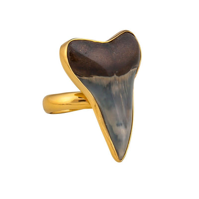 alchemia-fossil-shark-tooth-adjustable-ring - 3 - Charles Albert Inc