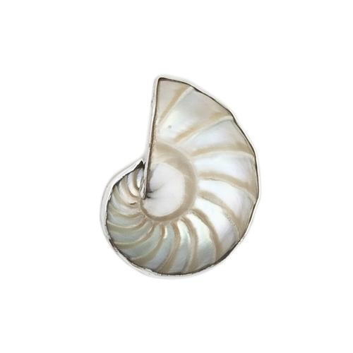 Sterling Silver Nautilus Shell Adjustable Ring